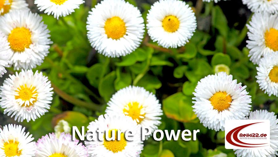 Nature Power by reiki22.de